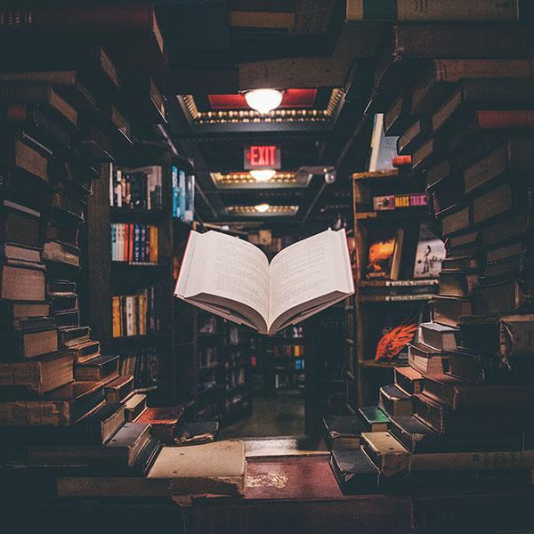 """La Feria del Libro de Barranquilla echa """"raíces"""" desde la virtualidad"""