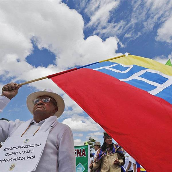 Entre la paloma y el conejo: crónica del plebiscito que fracturó a Colombia
